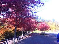 Oct_2013_039_small